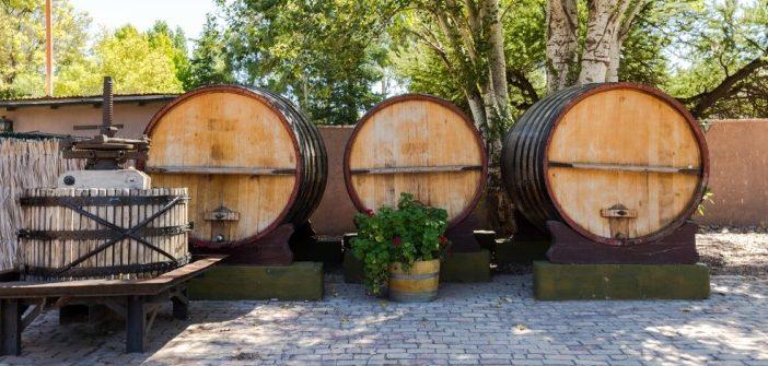 Edle Tropfen aus Südamerika: Argentinischer Wein