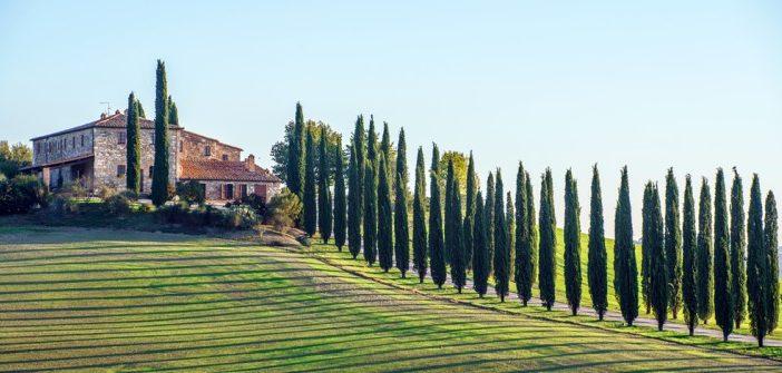 Toscana: Weinreise zu Chianti & Co.