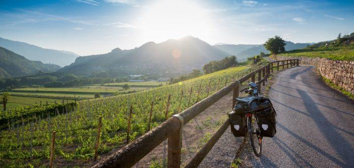Internationale Weinreisen