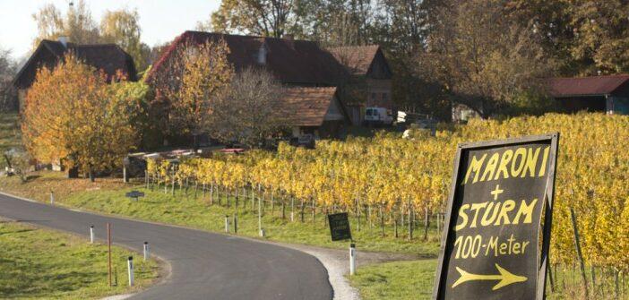 Die Glanzer Weintour zum Heurigen im Buschenschank in der Steiermark