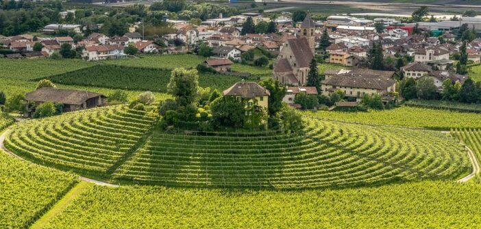 Weinurlaub in Südtirol