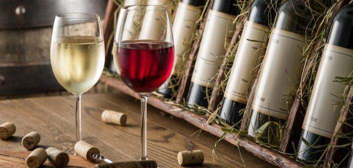 Die VDP-Weingüter: über das Weingut der Experten
