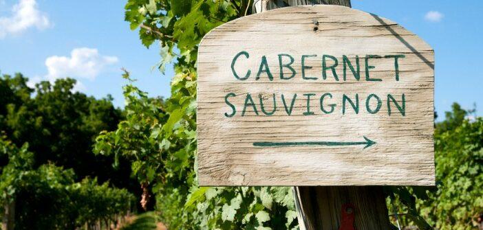 Cabernet Sauvignon: der rote Weltwein