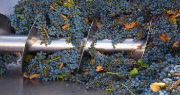 Wie wird Wein hergestellt?