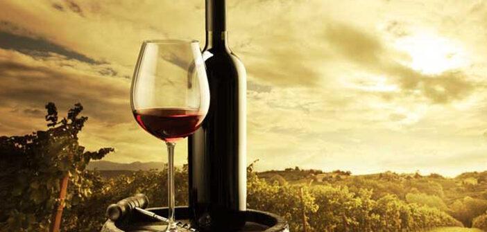 Bardolino Wein und der Gardasee