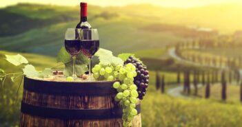 Weingut kaufen: warum immer mehr Manager am Wochenende den Winzer geben