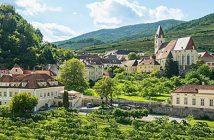 Weinreise-in-die-Wachau-3620-Spitz-Weingärten