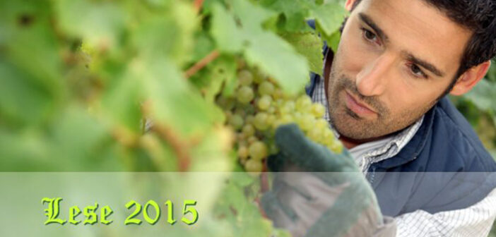 Lese 2015: Only good news