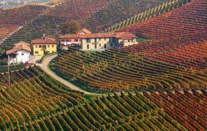 Eines der vielen pittoresquen Weingüter im Piemont ist der ideale Ort, Land und Leute persönlich kennenzulernen. (#3)