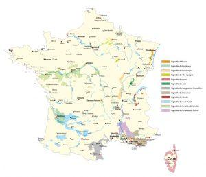 Die Champagner Anbaugebiete in Frankreich in einer Übersicht. (#2)