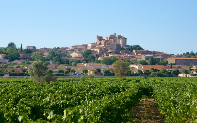 Die bekanntesten Crémant-Schaumweine stammen aus verschiedenen Gegenden Frankreichs: dem Elsass, aus dem Gebiet der Loire, aus dem Jura, dem Languedoc (Crémant de Limoux), aus dem Burgund und der Gegend um Bordeaux. (#01)