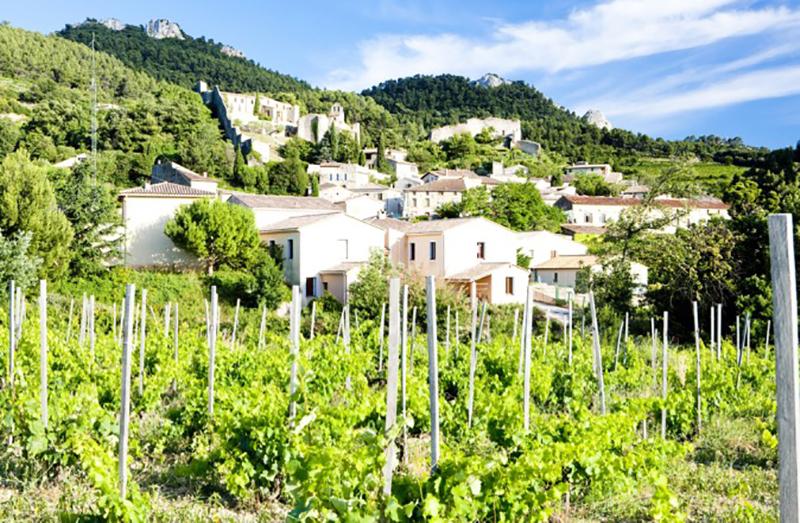 Wein erster Klasse kommt zum Beispiel aus Gigondas, einer Region in der Provence. (#1)