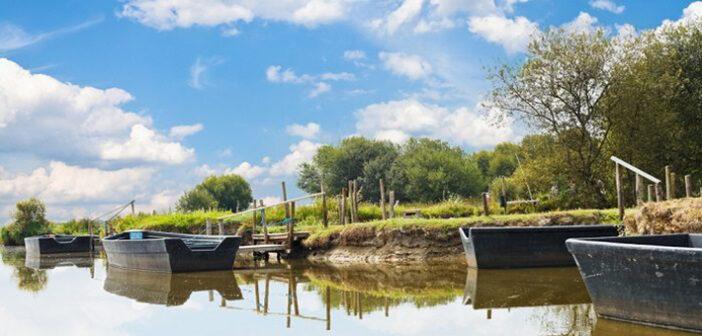 Naturpark in Frankreich: Empfehlung für Weinliebhaber