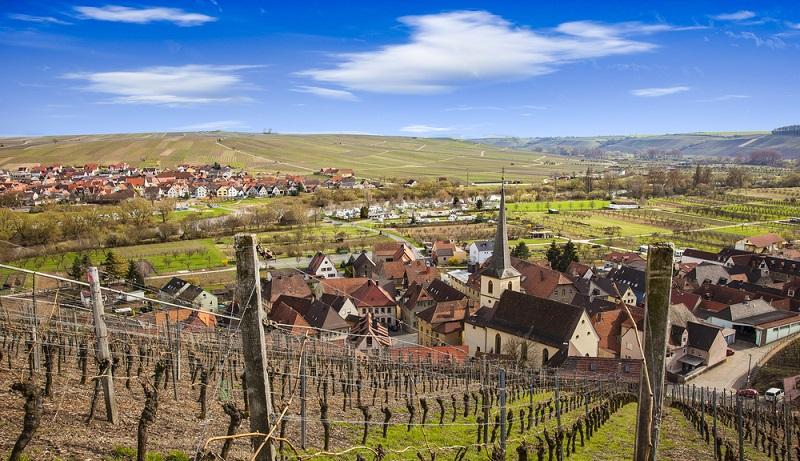 """Nicht ohne Grund konzentriert sich die Auszeichnung """"Best of Gold"""" ganz und gar auf die fränkischen Weine. Das Weinanbaugebiet mit Tradition hat ideale Voraussetzungen zu bieten, um beste Weine hervorzubringen (#01)"""