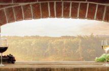 Saccharose in der Weinherstellung: Zucker im Wein?