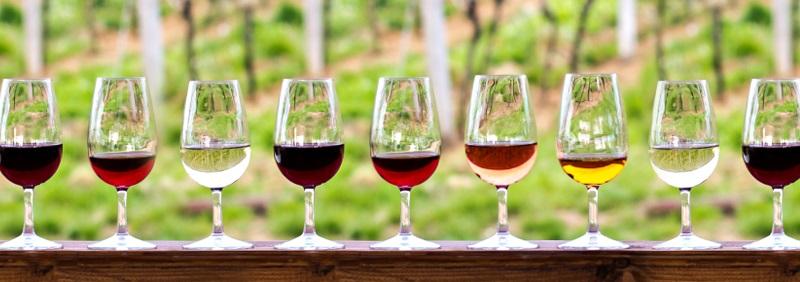 Wein ist wahrscheinlich das älteste alkoholische Getränk der Menschheitsgeschichte.