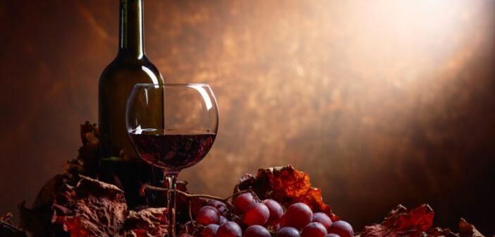 Mazeration: Wichtiger Schritt beim Keltern edler Weine