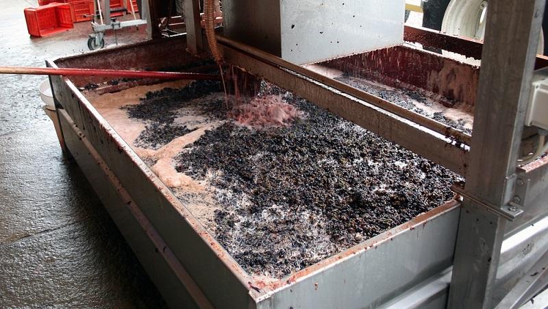 Im Anschluss an das Einmaischen startet der Gärprozess, der sich direkt in der Maische vollzieht.