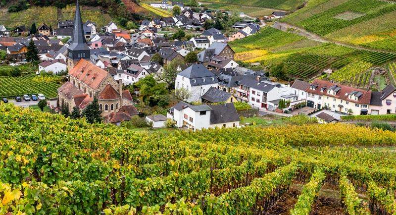Der Rotweinwanderweg durch das Ahrtal besteht bereits seit 1972 und zählt damit zu den traditionsreichsten Weinwanderwegen in Deutschland.