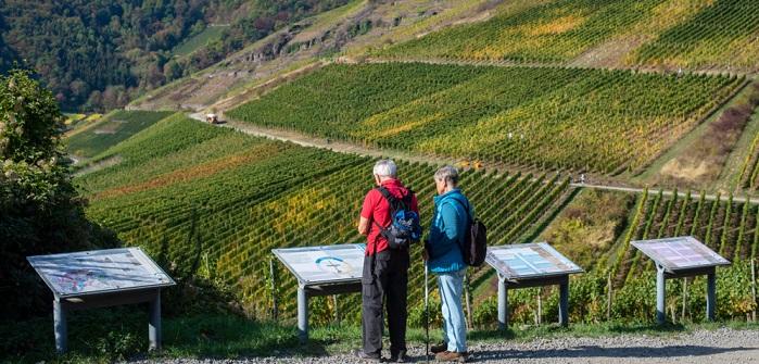 Rotweinwanderweg: 5 Rotweinwanderungen in Deutschland
