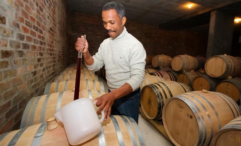 Die Top 10 Weine sind übrigens heute schon so beliebt, dass inzwischen rund vier Prozent der Weine aus dem südlichsten Zipfel Afrikas stammen. ( Foto: Shutterstock-Sunshine Seeds)