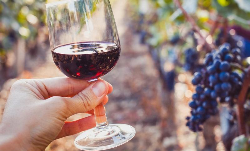 Die kräftigen Rotweine sind charakteristisch für das Land am südlichsten Zipfel Afrikas. ( Foto: Shutterstock-_Song_about_summer)