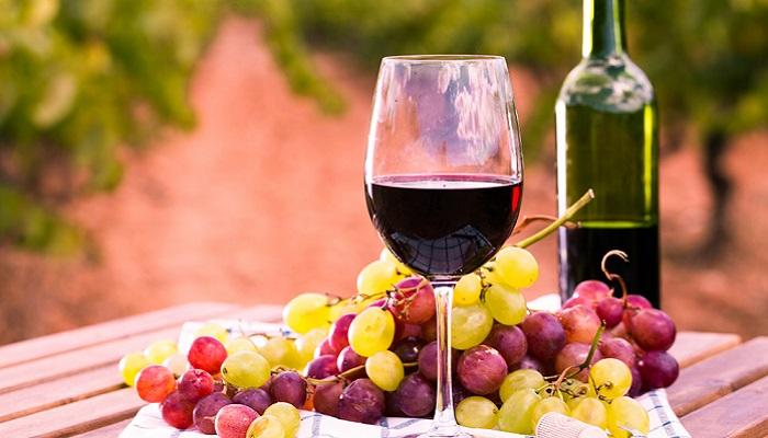 Die Entwicklung ist beim Weinanbau auch nicht stehen geblieben ( Foto: Shutterstock-caftor)B