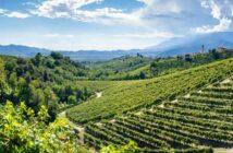 Venetien: Reiseziele, Rebsorten und Gaumenfreuden. Unser Titelbild zeigt das Valdobbiadene Treviso in Italien: Hügel und Weinberge auf der berühmten Weinroute des Prosecco (Foto: shutterstock - Claudio Stocco)